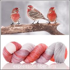 Expression Fiber Arts, Inc. - FRIENDSHIP 'LUSTER' SUPERWASH MERINO TENCEL SPORT yarn - - juicy coral orange, silver and ivory - May you always be surrounded and supported by friends who understand your heart and love you unconditionally.