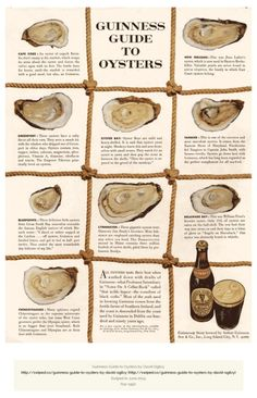 The Guinness Guide to Oysters - Old School Native Advertising