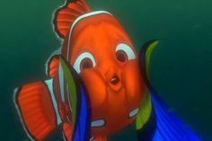 """""""NEMO!!!! I FOUND YOU!!!!!! BUT YOU WERE DEAD AND YOUR FATHER...*gasp* YOUR FATHER!!!!!!!"""" - Dory <3"""