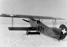 Swiss Air Force Fokker DVII  Zürich 1922,