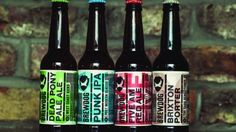 BrewDog, sour beer,