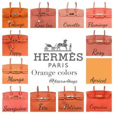 e are some standard Hermes colors and how it looks on the Birkin. I've taken these pictures from various sources and complied them for easy reference. Sac Birkin Hermes, Hermes Bags, Hermes Handbags, Black Handbags, Purses And Handbags, Cheap Handbags, Cheap Purses, Hermes Kelly Taschen, Hermes Kelly Bag