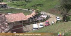 """""""O GRITO DO BICHO"""": Sitio Dona Lucia resgata animais em sofrimento - B..."""