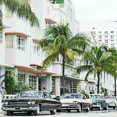 When we think of Miami, we think of midcentury charm, preppy polish, and lots of color! 🌴 ✨Tap the link in our bio to shop our favorite vintage picks from this vibrant tropical city! When Us, Summer Of Love, South Beach, One Kings Lane, Vintage Cars, Preppy, Classic Cars, Miami, Multi Story Building