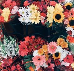 could do with a lovely bunch of flowers  ☆ Follow us @popcherryau for more flower obsessed pics ☆ colourful flowers // red // yellow // white // pink