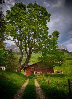Switzerland (by ceca67)