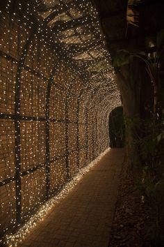 14-casamento-fernanda-haidar-festa-casa-fasano-tunel-luzinhas
