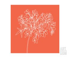 Blossom Pop Tangerine Photographic Print by Jan Weiss at Art.com