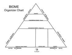 Printables Biome Worksheets pinterest the worlds catalog of ideas biome organizer chart worksheet lesson planet