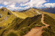 Kepler Track, Fiordland National Park - South Island, New Zealand