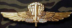 Italy Italian Para Saboteur Parachute Jump Badge gold metal wings B&T 1796