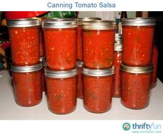 This is a guide about canning tomato salsa. Store bought salsa is never as good as what you can make at home. By making a large batch and canning your salsa, you can store jars for later or give them as gifts.