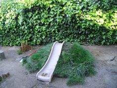 Natural Playscape