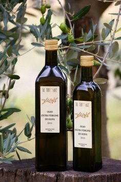 Olive Oil, Val D'Orcia, Tuscany, Italy