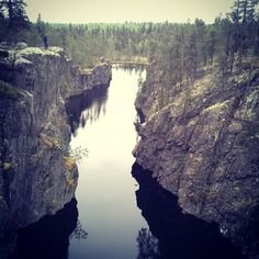 Gimegolts, a walk on the wild side, Sorsele in Swedish Lapland.