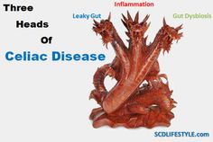 The three headed Celiac Disease Monster.  Vitamin D can help you take it down, find out how it defeats leaky gut and inflammation in one fell swoop.