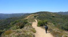 Topanga-State-Park-California