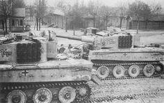 Tiger of schwere Panzerabteilung 501