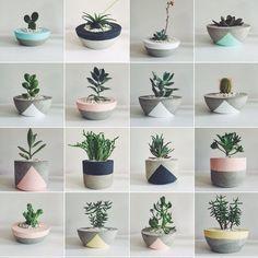 Diy Concrete Planters, Cement Pots, Diy Planters, Succulent Planters, Succulents Garden, Planting Flowers, Painted Plant Pots, Painted Flower Pots, House Plants Decor