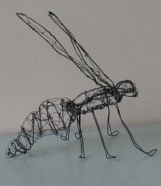 Wire Insect | I used two gauges of wire to create my insect.… | Flickr