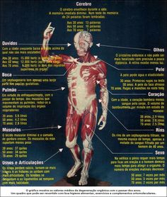 | CAMEP - Centro Avançado de Medicina Preventiva |