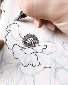 Peony Drawing, Flower Art Drawing, Flower Line Drawings, Floral Drawing, Nature Drawing, Pencil Art Drawings, Art Drawings Sketches, Painting & Drawing, Simple Flower Drawing