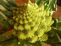 Le chou Romanesco est le meilleur exemple de fractales dans le monde végétal - ©…