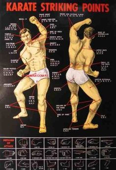 "Amazon.com: Poster KARATE Striking, Pressure Point Dim Mak Striking Points Poster. 19.5"" X 30: Sports & Outdoors"