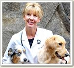 Have a dog question? Ask Dr. Christianne Schelling.  Send your dog questions in to the Dog Health Newsletter here: http://www.doghealthnewsletter.com/new…/doghealthnews110.htm ‪#‎dogs‬ ‪#‎doghealth‬ ‪#‎doghealthnewsletter‬