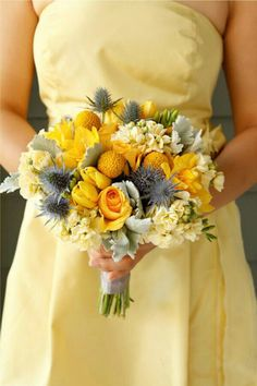 Yellow Bridesmaid's Flowers Arranged With Yellow Roses, Yellow Freesia, Yellow Tulips, Yellow Craspedia, Yellow Stock, Blue Eryngium Thistle, & Dusty Miller~~
