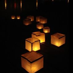 eco-friendly biodegradable water lanterns... perfect for floating in the pool during parties or to light a garden path!