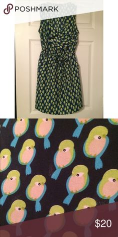 Owl print dress Only worn a handful of times. Perfect condition. Dresses Mini