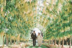 Beau Couture -One Of A Kind - Designer Bridal Dresses. Design Studio nestled in the hills of Dunedin. Bridal Dresses, Wedding Gowns, Bridal Dress Design, Couture, Couple Photos, Bride Dresses, Homecoming Dresses Straps, Couple Shots, Bridal Gowns