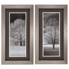 """Propac """"Black & White Trees"""" Wall Art - Pack Of 2 2818 - Propac """"Black & White Trees"""" Wall Art - Pack Of 2 2818Set of two black and white tree prints that are double matted and framed under glass and finished in a shadow box silver and black frame. This is a nice accent in room with lots of color.SKU: 2818Manufacturer: Propac ImagesProduct Type: Wall ArtUPC: 741364028186Box Weight (Lbs): 13Dimensions: 14 W x 1 D x 26 H Inches Shipping Dimensions: 22 X 6 X 34"""