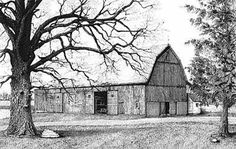 Line Drawing of Barn | And on the large Oak tree from the Elwer barn drawing I completed in ...
