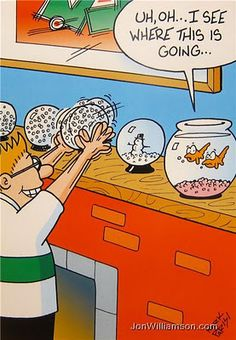 If you have snow globes and fish watch those kiddos they may get confused!    GIGGLE!