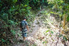 Penang National Park Monkey Beach Trek Malaysia #Malaysia #Penang #jungle #Jungletrek #Malaysia
