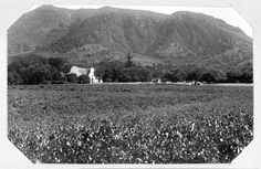 Gouvernements-Weinfarm in Groot-Constantia. History Of Wine, Inner World, Folk Music, Cape Town, Astronomy, South Africa, Old Things, Travel, Trips