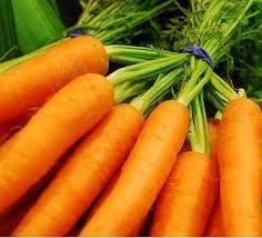La zanahoria  - La mochila de Lola