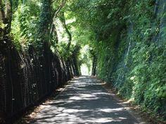 Converted Railway Line