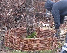 Sensory Garden, Diy Bench, Permaculture, Home And Garden, Green, Blog, Gardens, Hampers, Hens