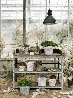 Creëer een gezellige sfeer in je tuin om potten en plantjes met elkaar te combineren. Op deze manier haal je de gezelligheid in je tuin. Laat die groene vingers maar zien en zorg dat je tuin er weer tip top in orde uit komt te zien.