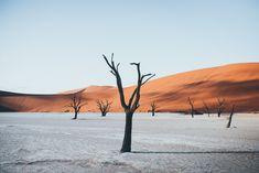 Namibia • Pie Aerts