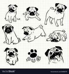 Picture of Line drawing of Pug dog set on grid paper use for elements design. Mops Tattoo, Blue Pug, Pug Tattoo, Tattoos, Monster Drawing, Easy Animals, Pug Art, Pug Pictures, Animals