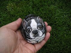 Painted Rock Animals, Painted Rocks Craft, Painted Stones, Painted Pebbles, Stone Painting, Rock Painting, Boston Terrier Art, Boston Art, Rock Crafts