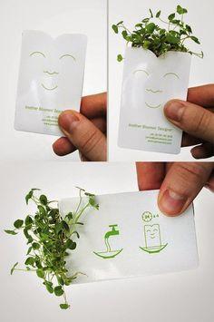la cuisine du graphiste: Carte verte