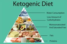 In a new study researchers had found diets such as the ketogenic diet and modified Atkins diet treatment of refractory epilepsy found these diets may reduce seizures in adults.