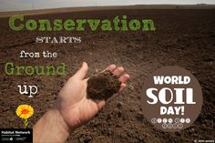 """Conservation starts from the ground up, both in effort and in ecology. Healthy soils grow healthy communities of plants that attract more insects and produce more seeds to support a diversity of birds and other wildlife. Today marks World Soil Day, when we """"celebrate one of the planet's most vital, yet often overlooked, environmental resources."""" The Nature Conservancy's reThink Soil program advocates soil health solutions to many environmental problems."""