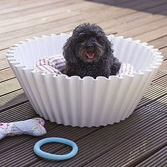 Cupcake Case Dog Bed - dogs