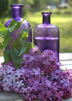 Gorgeous purple glass bottles and lilacs. Perfect for a purple wedding color scheme.